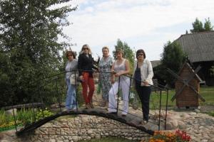 Поездка в Желудок