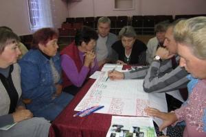 Стратегия развития деревни Залесье