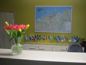 Опыт Эстонии — возможности для развития