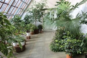 «Биоразнообразие растительности в усадьбе Огинского и аг. Залесье»
